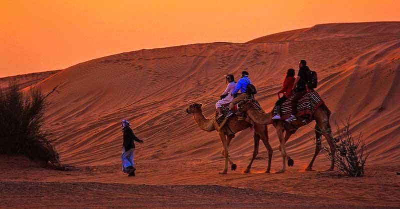 What's it Like to Take an Overnight Desert Safari?