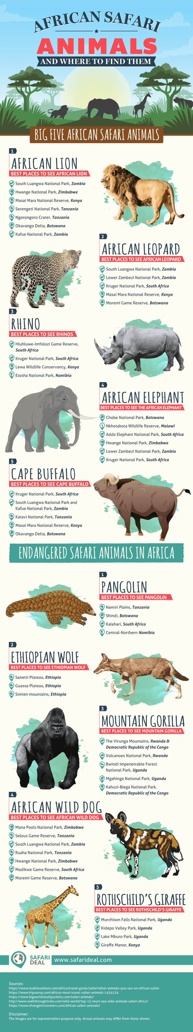 Big 5 African Safari Animals & where to find them infographic.