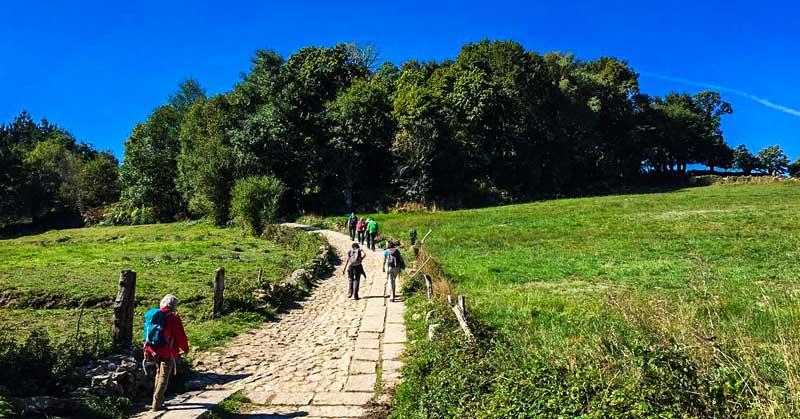 Hiking Camino de Santiago.