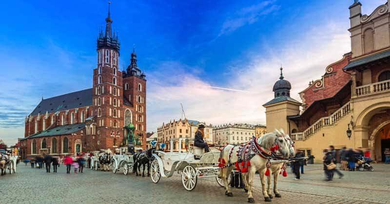 Horses in Krakow's historic main square